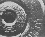 Warren Commission Exhibit 616, a photograph of the base of a bullet cartridge showing firing pin markings. Scanned from Warren Commission Volume XVII.